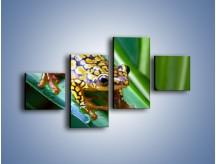 Obraz na płótnie – Kolorowy płaz na liściu – czteroczęściowy Z026W3
