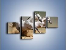 Obraz na płótnie – Białe konie w pustynnym galopie – czteroczęściowy Z055W3