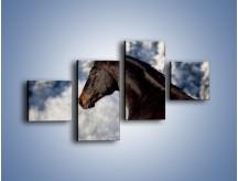 Obraz na płótnie – Brązowy ogier na zimowym spacerze – czteroczęściowy Z056W3