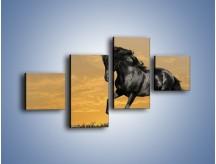Obraz na płótnie – Bieg z koniem po polanie – czteroczęściowy Z057W3