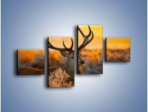 Obraz na płótnie – Ciężkie poroże jelenia – czteroczęściowy Z165W3