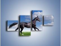 Obraz na płótnie – Dziki koń w biegu – czteroczęściowy Z194W3