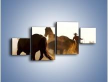 Obraz na płótnie – Cowboy wśród koni – czteroczęściowy Z206W3