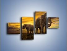 Obraz na płótnie – Ciekawość małego słonika – czteroczęściowy Z212W3