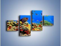 Obraz na płótnie – Kolory tęczy pod wodą – czteroczęściowy Z220W3