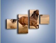 Obraz na płótnie – Koń który nie chce się zatrzymać – czteroczęściowy Z314W3