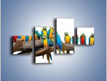 Obraz na płótnie – Kolorowe stado papug – czteroczęściowy Z326W3