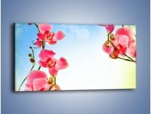 Obraz na płótnie – Akcent kwiatowy – jednoczęściowy panoramiczny K268