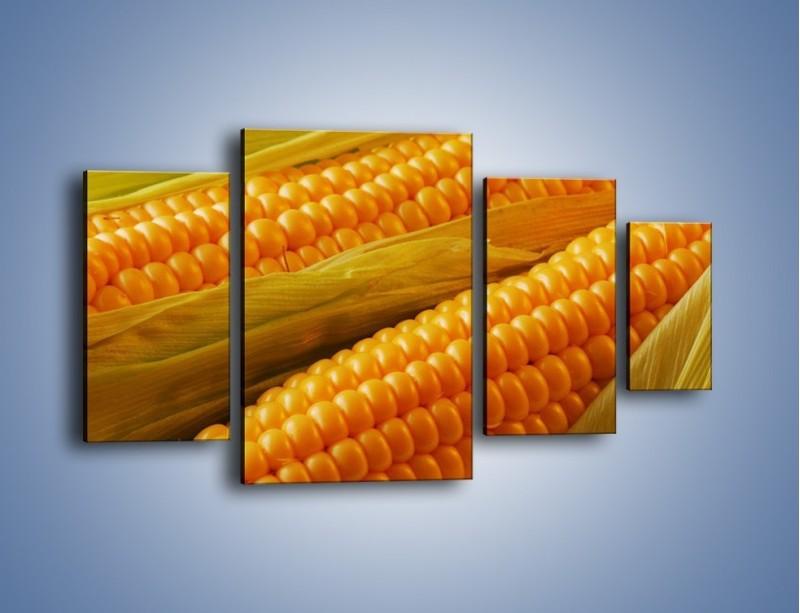 Obraz na płótnie – Kolby dojrzałych kukurydz – czteroczęściowy JN046W4