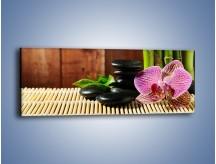 Obraz na płótnie – Bambus storczyk i kamienie – jednoczęściowy panoramiczny K279