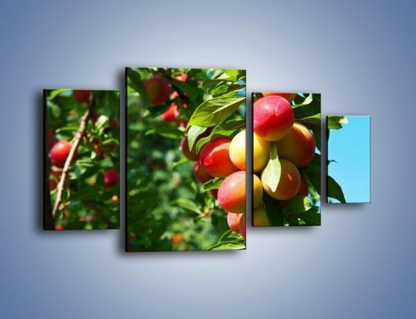 Obraz na płótnie – Drzewa pełne brzoskwiń – czteroczęściowy JN495W4