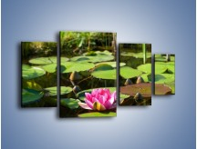 Obraz na płótnie – Ciemno-różowy nenufar na wodzie – czteroczęściowy K014W4