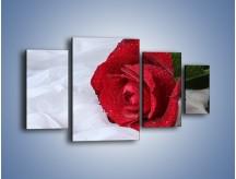 Obraz na płótnie – Bordowa róża na białej pościeli – czteroczęściowy K1023W4
