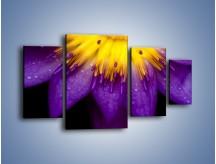Obraz na płótnie – Baśniowy kwiat z tajemnicą – czteroczęściowy K189W4