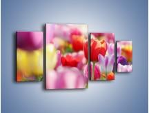 Obraz na płótnie – Boso przez tulipany – czteroczęściowy K344W4