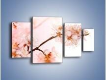 Obraz na płótnie – Blask kwiatów jabłoni – czteroczęściowy K569W4