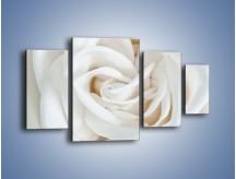 Obraz na płótnie – Biel róży za dnia – czteroczęściowy K709W4