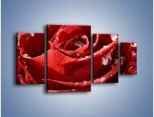 Obraz na płótnie – Chłód w różanych płatkach – czteroczęściowy K932W4