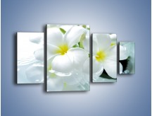 Obraz na płótnie – Białe kwiaty w potoku – czteroczęściowy K991W4