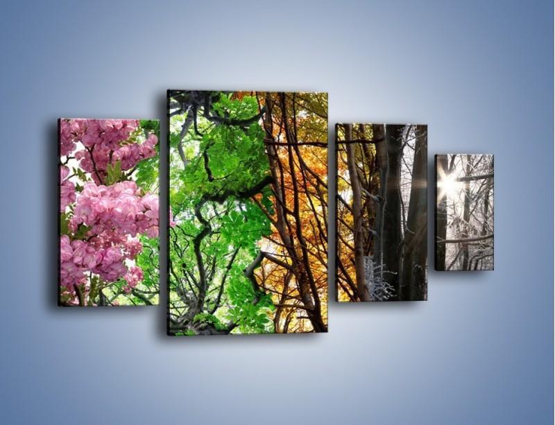 Obraz na płótnie – Drzewa w różnych kolorach – czteroczęściowy KN037W4