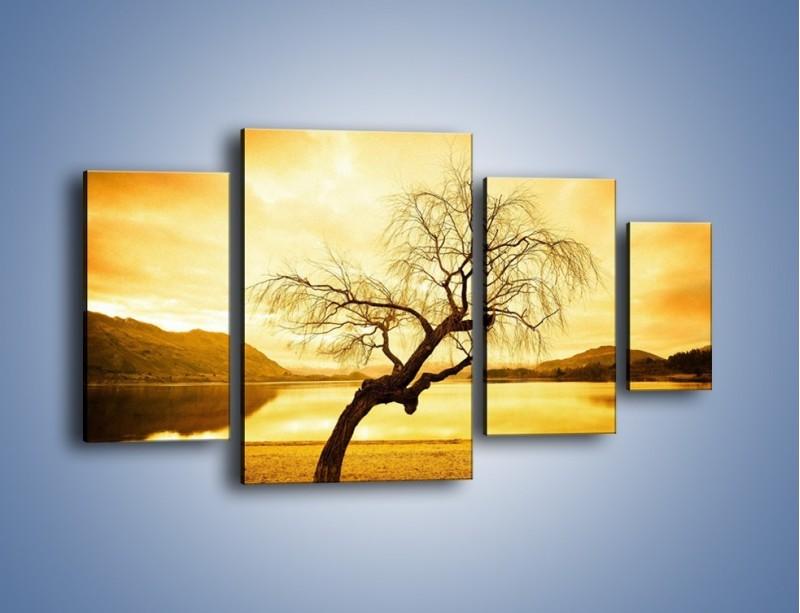 Obraz na płótnie – Pochylone drzewo w sepii – czteroczęściowy KN1033W4