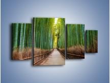 Obraz na płótnie – Bambusowy las – czteroczęściowy KN1187AW4