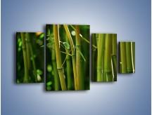 Obraz na płótnie – Bambusowe łodygi z bliska – czteroczęściowy KN118W4