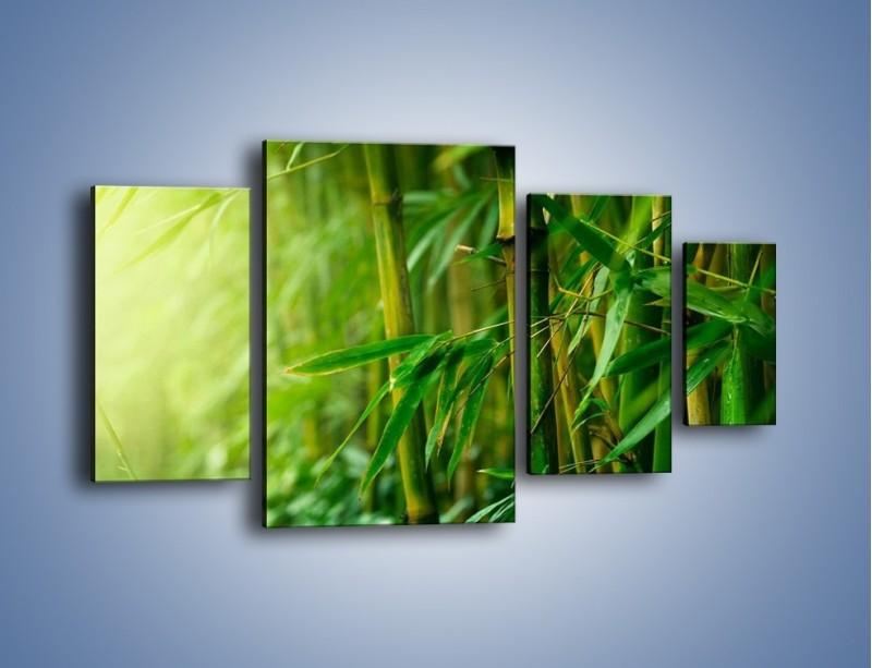 Obraz na płótnie – Bambus w roli głównej – czteroczęściowy KN1202AW4