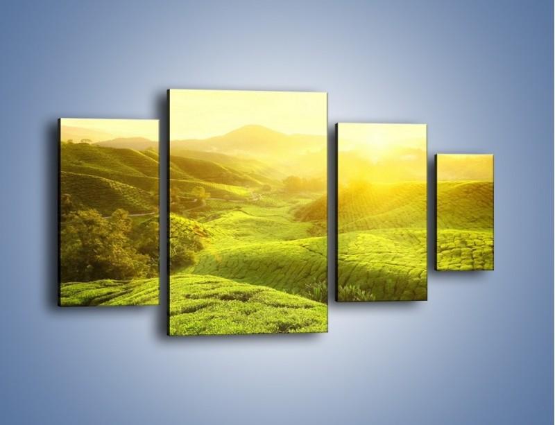 Obraz na płótnie – Zieleń w dolinie – czteroczęściowy KN1204AW4