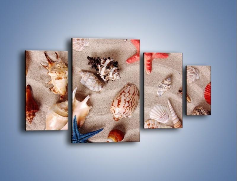 Obraz na płótnie – Kolorowe skorupiaki – czteroczęściowy KN1214AW4