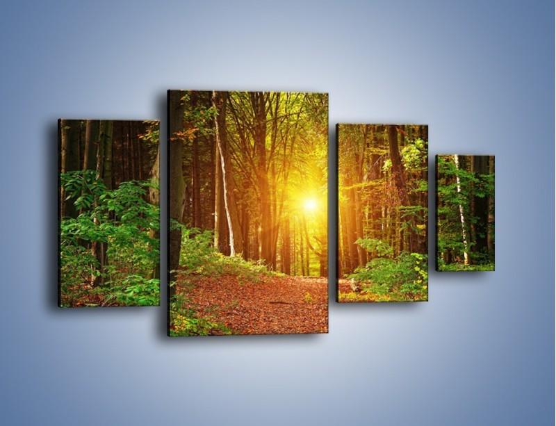 Obraz na płótnie – Polski krajobraz leśny – czteroczęściowy KN1257AW4