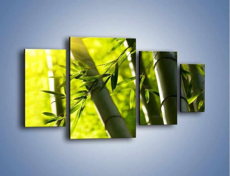 Obraz na płótnie – Twarde łodygi bambusa – czteroczęściowy KN1314AW4