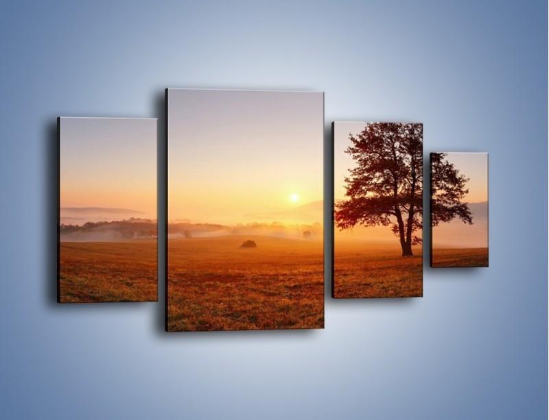 Obraz na płótnie – Krajobraz utopiony we mgle – czteroczęściowy KN1331AW4