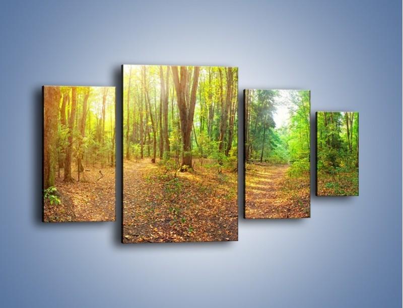 Obraz na płótnie – Przejrzysty piękny las – czteroczęściowy KN1344AW4