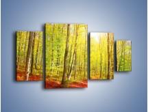 Obraz na płótnie – Brzózki liście i las – czteroczęściowy KN1345AW4