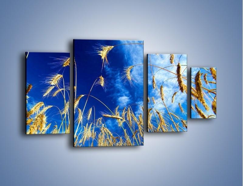 Obraz na płótnie – Zboże w niebie – czteroczęściowy KN139W4