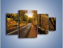 Obraz na płótnie – Asfaltową droga przez las – czteroczęściowy KN169W4