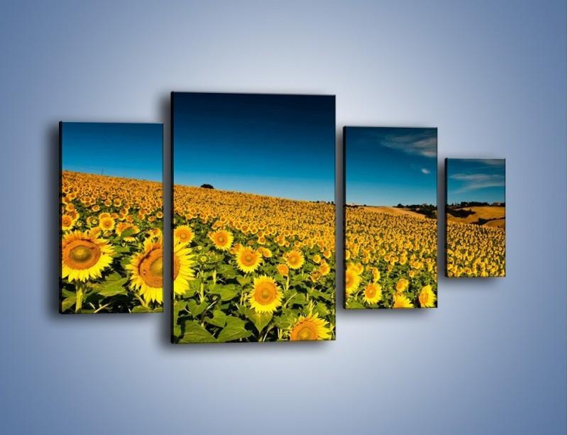 Obraz na płótnie – Słonecznikowe uśmiechnięte główki – czteroczęściowy KN205W4