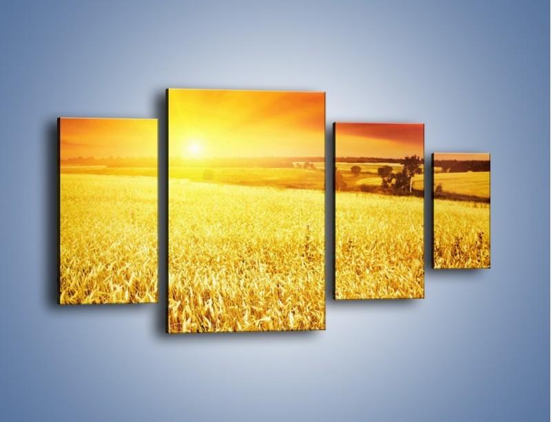 Obraz na płótnie – Zboże złote jak słońce – czteroczęściowy KN398W4