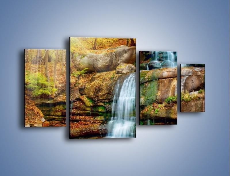 Obraz na płótnie – Leśne podłoże późną jesienią – czteroczęściowy KN563W4