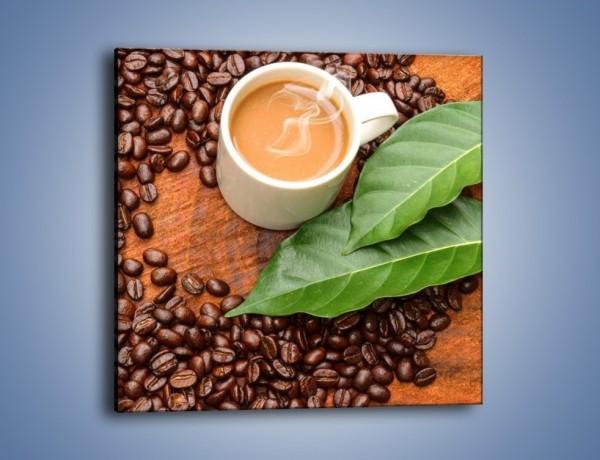 Obraz na płótnie – Ziarna kawy pod liściem – jednoczęściowy kwadratowy JN417