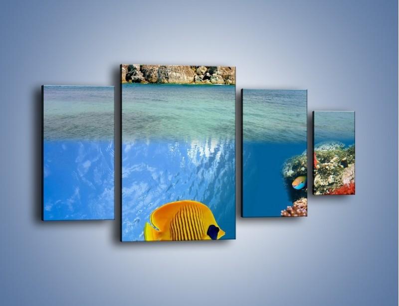 Obraz na płótnie – Podwodny świat na wyspie – czteroczęściowy KN586W4