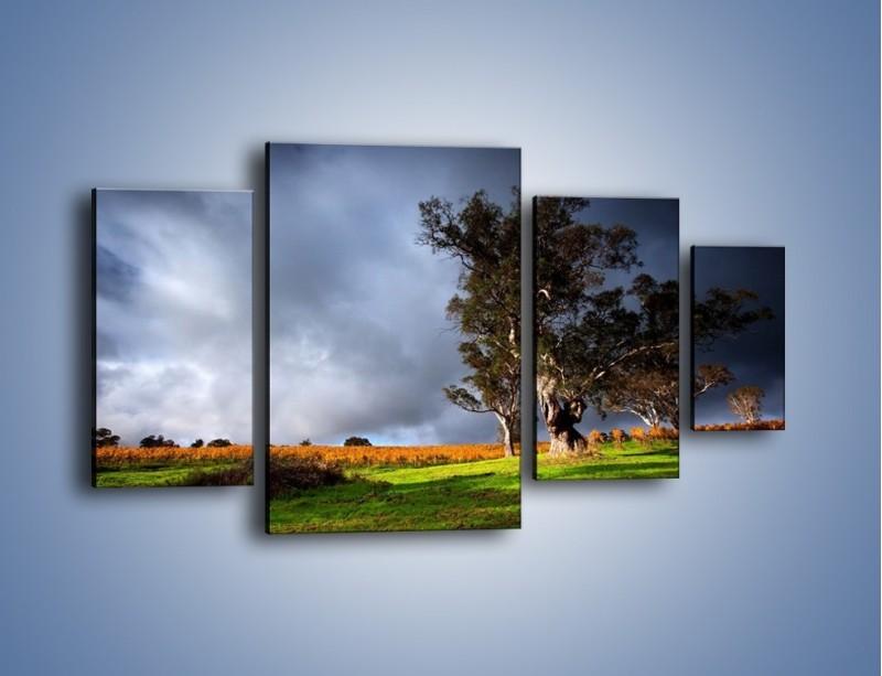 Obraz na płótnie – Burzowe chmury nad polaną – czteroczęściowy KN748W4