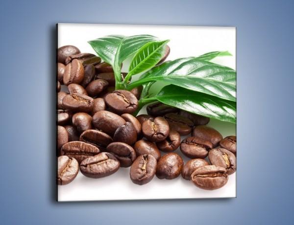 Obraz na płótnie – Kawa wśród zieleni – jednoczęściowy kwadratowy JN418
