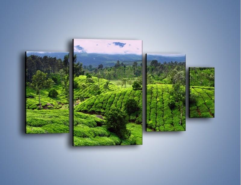 Obraz na płótnie – Rozległa zielona kraina – czteroczęściowy KN872W4