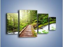 Obraz na płótnie – Bezpieczna droga przez las – czteroczęściowy KN922W4