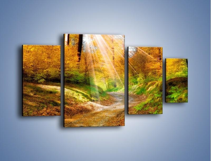 Obraz na płótnie – Promienną i słoneczną ścieżką przez las – czteroczęściowy KN989W4