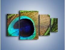 Obraz na płótnie – Cudowne pawie oko – czteroczęściowy O048W4