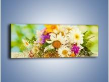 Obraz na płótnie – Bukiecik dla małej ogrodniczki – jednoczęściowy panoramiczny K369