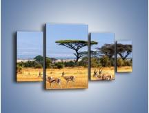 Obraz na płótnie – Antylopy w słonecznej afryce – czteroczęściowy Z003W4
